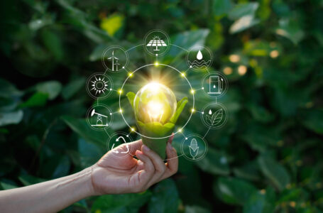 Ce este sustenabilitatea și de ce este importanta?